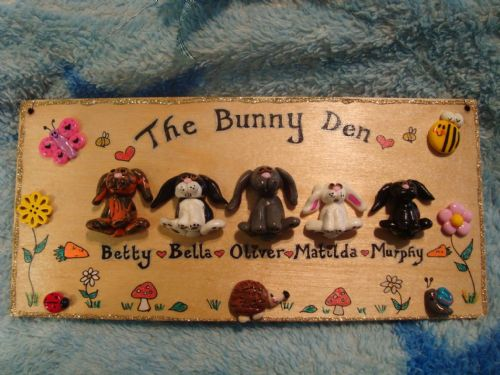 5 character Large 3d Pet Animal Bunny Rabbit Dog Cat Guinea Pig Sign Any Phrasing Personalised & Customised Plaque Handmade